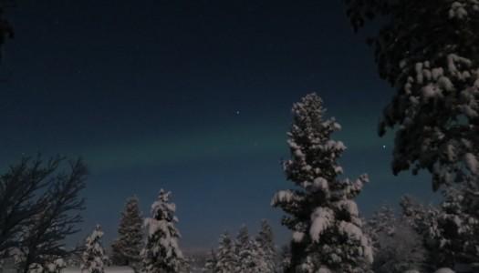 Kiruna, -38 Grad, aber jedes einzelne wert!