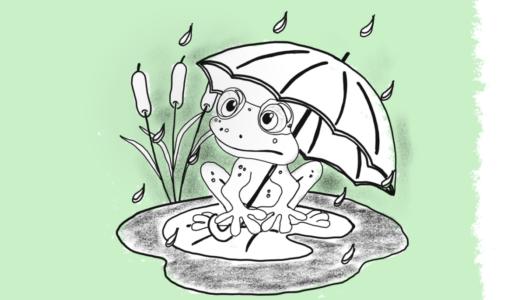 Auf der Spur des «saint»-gallischen Wetterfluches