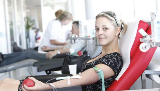 Vom Blutsauger zum Blutspender